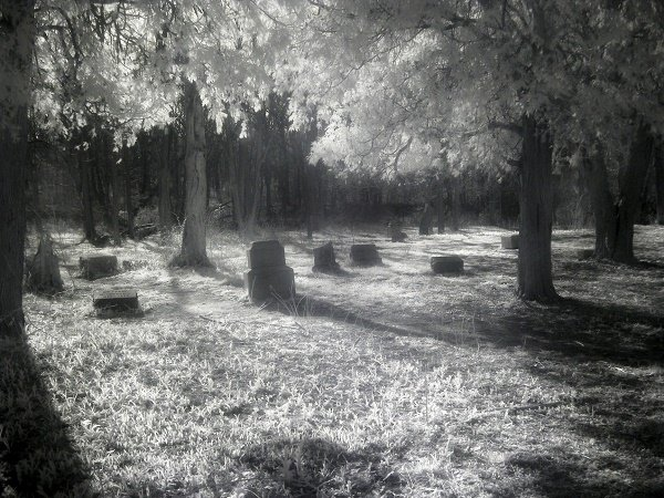 bachelors-grove-cemetry